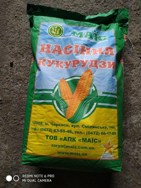 Продам семена кукурузы МАЇС