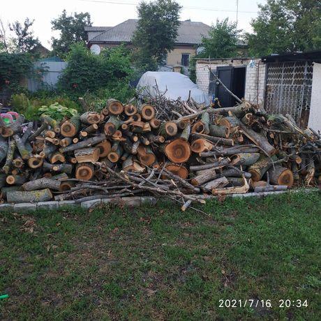 Свежесрезанные дрова ореха