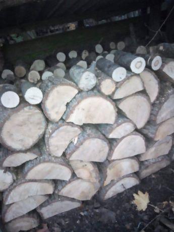 sprzedam drzewo