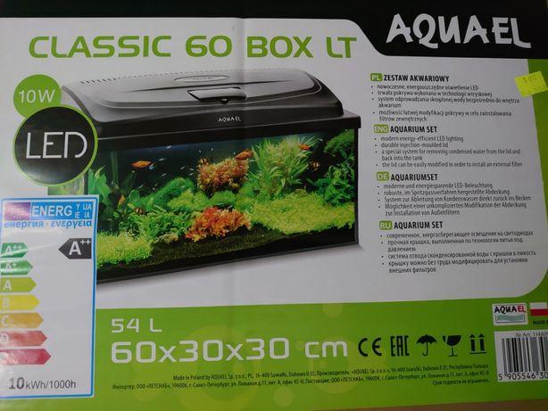 Clasic 60 BOX LT akwarium roślina ryba korzeń podłoże mech Waterworld