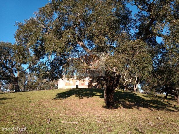 Monte Alentejano de 8,4ha com bons acessos e vistas de ca...