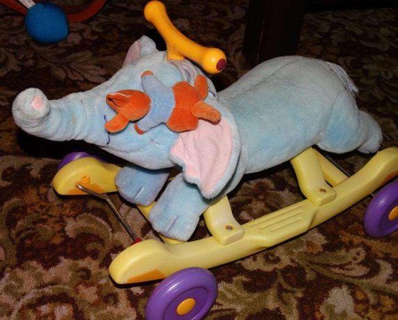 Slon na biegunach lub kolkach - wymiennie