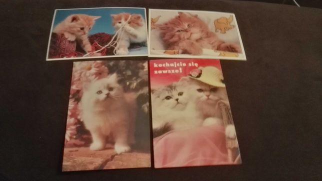 Pocztówki - koty