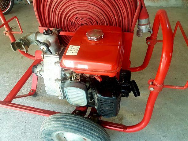 Motor Rega Robin