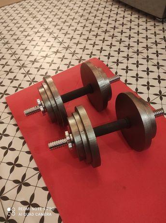 Hantle 2x 22 kg obciążenie krążki