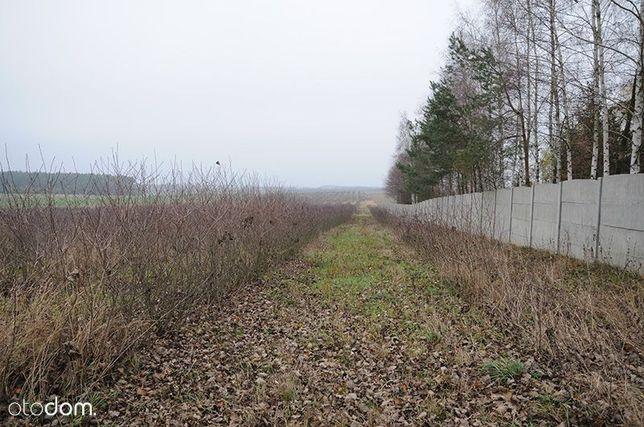 Działka rolna 4,25 ha