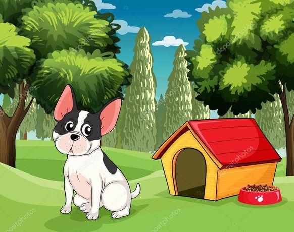 Передержка собак, гостиница для собак, 15 км от Чернигова
