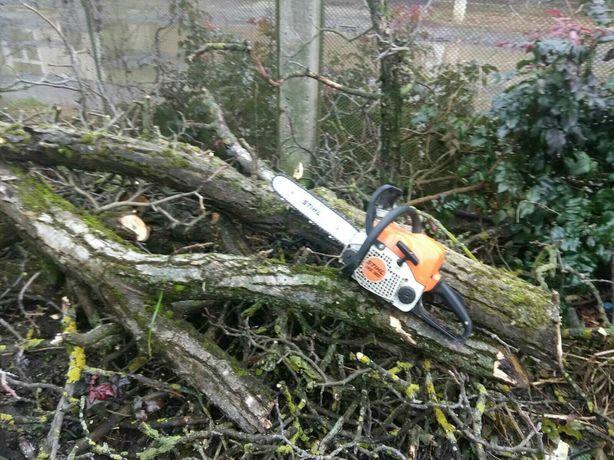 Порізка дров, зрізати дерево ,рубка дров, зачистка ділянки