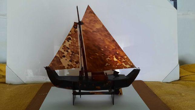 Barco em casca de tartaruga