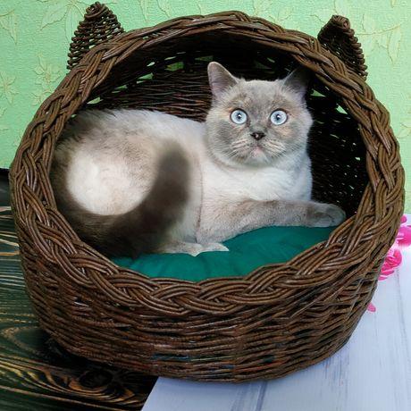 Домик лежанка для кошки плетёный .