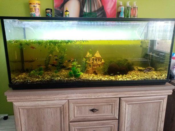 Zestaw akwarium 240l i Led belka oswietleniowa