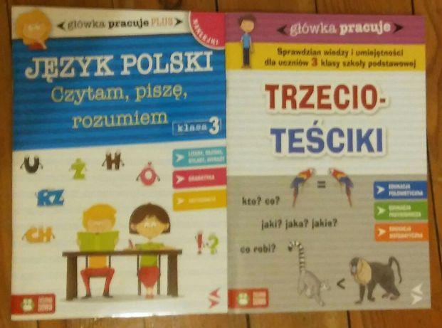 Zielona sowa główka pracuje Język Polski Trzecio-Teściki klasa 3