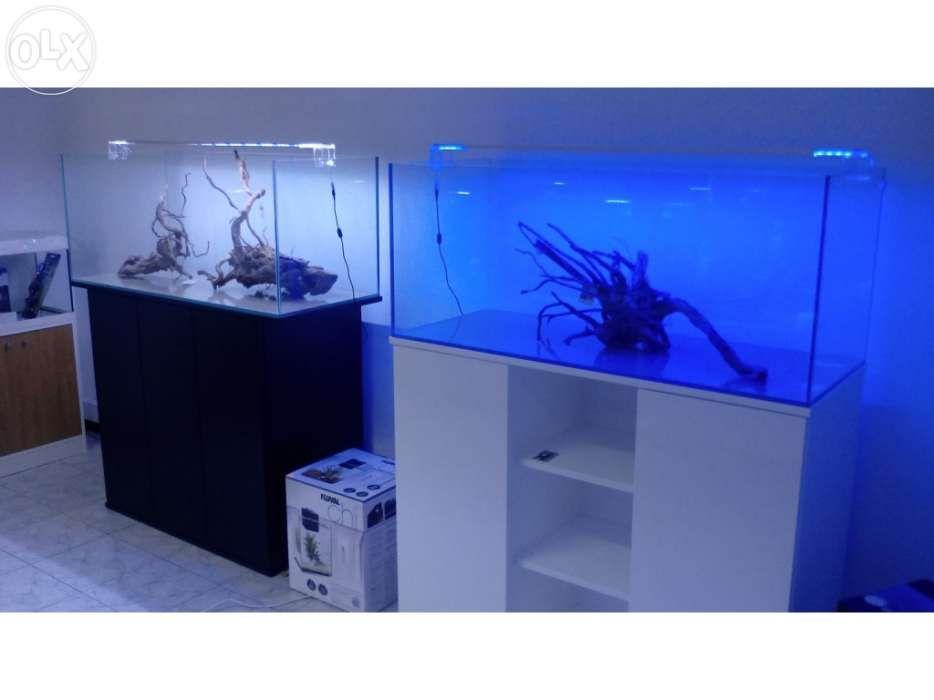 Aquario novo 120 x 50 x 50