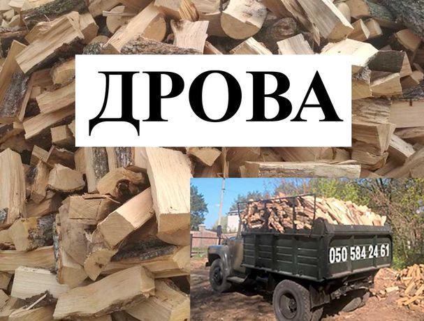 Дрова Дуб, Граб, Ясень. Купить сухие дубовые дрова 100% качество.
