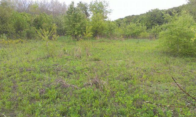 Продам землю під товарне виробництво/сільське господарство