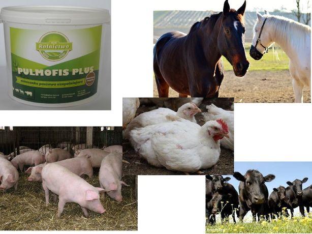 Pulmofis Plus KASZLE, choroby oskrzeli,płuc, duszności u bydła, trzody