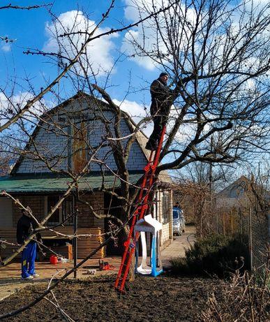 Обрезка старого сада ОБРЕЗКА плодовых деревьев, САДОВНИК уход за садом