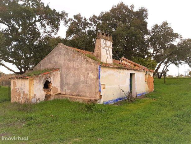 Quinta - São Domingos da Serra