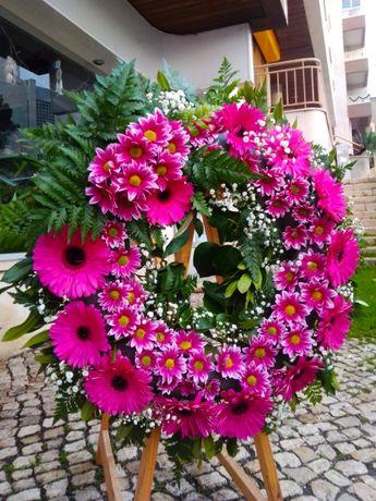 Terra Viva - Florista   Plantas Ornamentais   Frutas   Sementes