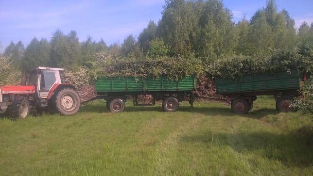 Wycinka drzew ciecie transport drewno koninkowe