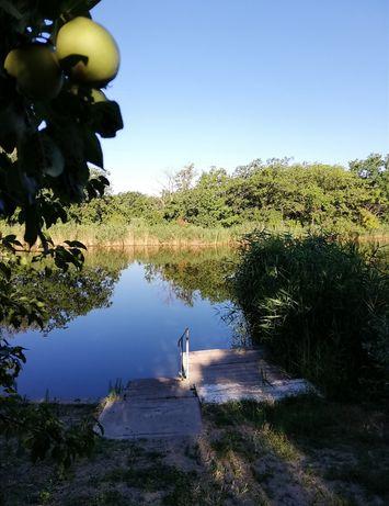 продам участок в Новоселовке, 20 км от Днепра. Лес, река рядом