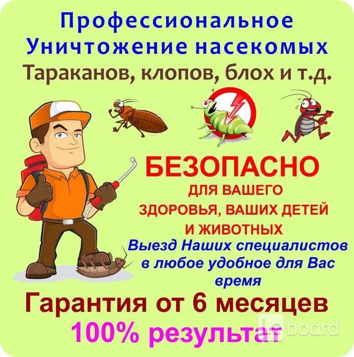 Дезинфекция тараканы,блохи,клещи и т.д от 450 гр. Днепр - изображение 1