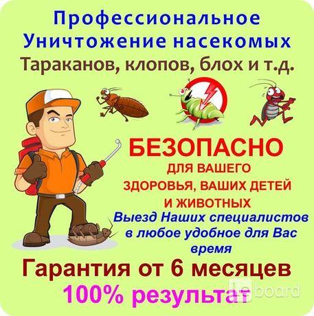 Дезинфекция тараканы,блохи,клещи и т.д от 450 гр.