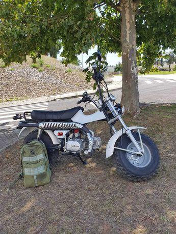 Mota Skyteam T-REX 125cc  Troco por uma Famel xf 17 super.
