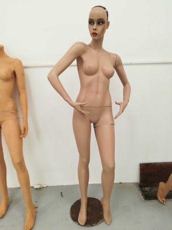 Manequins e bustos