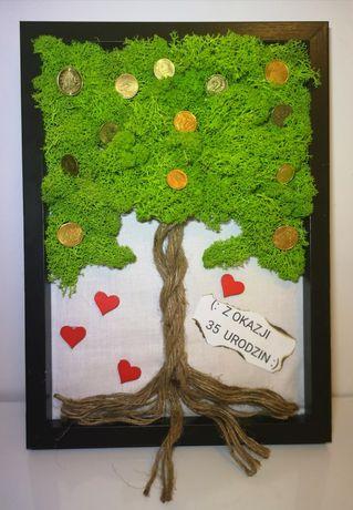 Obraz Prezent Urodziny Mech Chrobotek Drzewko Szczęścia