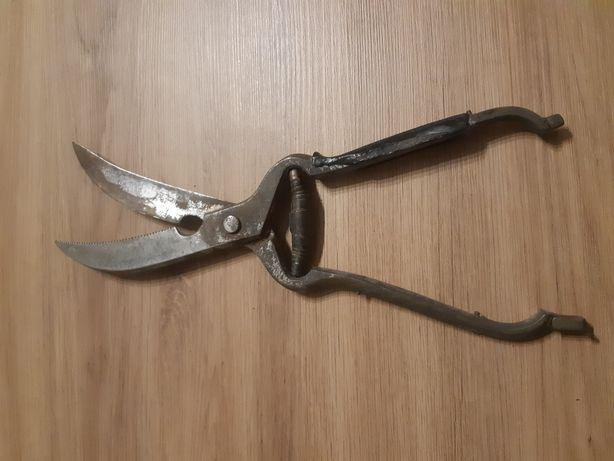 Bardzo stare nożyce do drobiu boker solingen