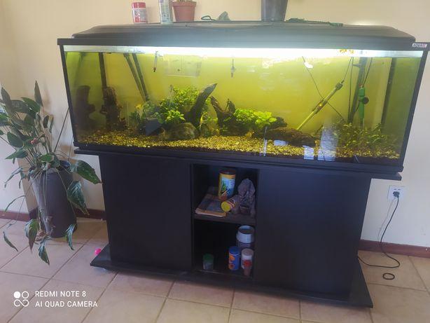 Aquário completo com 150x50x50 cerca de 350 litros