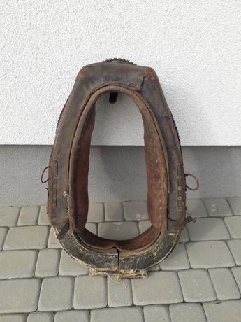 Homonto dla konia