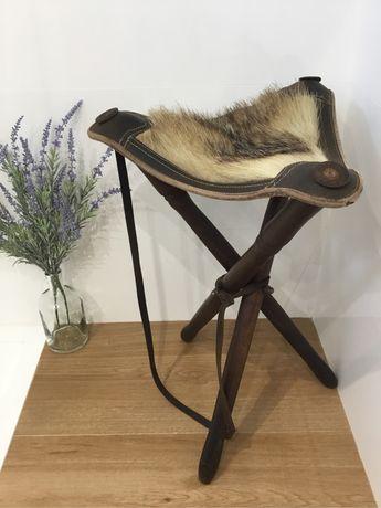 Cadeira caça, couro, madeira, javali