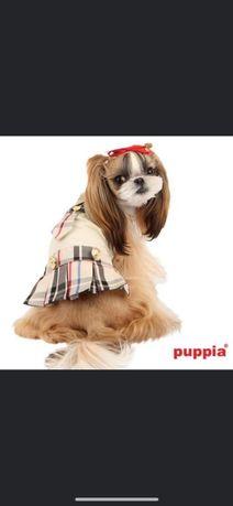 Ekskluzywna sunkienka dla pieska firmy PUPPIA