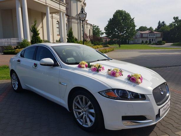 Auto do Ślubu JAGUAR XF DobraCena WwaMińskGarwolinOtwockWyszkówLegiono