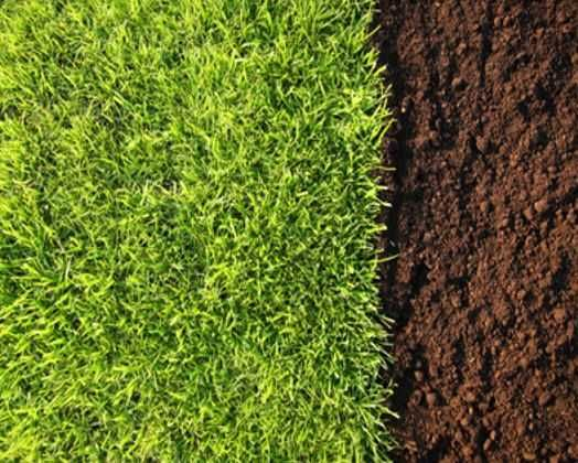 Ziemia ogrodowa pod trawnik Czarnoziem * Ziemia SIANA * z kompostem