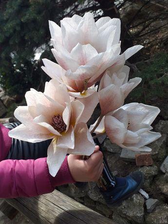 Искуственные декоративные цветы из гофрированной бумаги