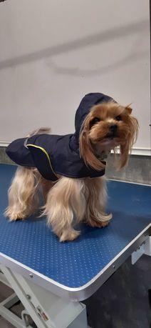 Kurtka przeciwdeszczowe ubranko z kapturem dla psa