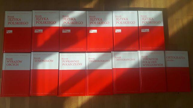 Słownik 13 tomów