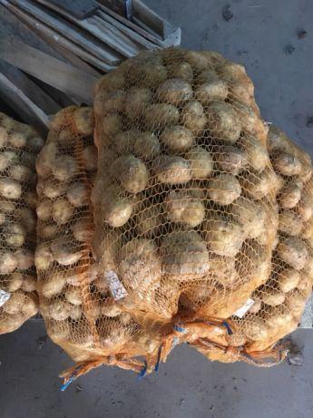 ziemniaki Lord i Red Sonia, ziemniak, pyry, bulwy, cena za 15 kg