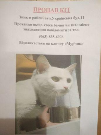 УВАГА Пропав кіт