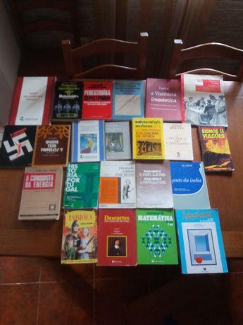 Lote de 22 livros