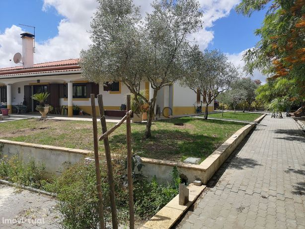 Quinta com moradia com piscina e olival na Vidigueira