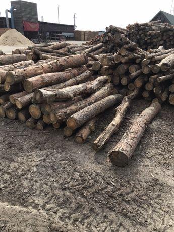 Drewno opałowe okrągłe 2,5 m długie