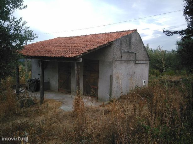 Venda de Quinta localizada em Oliveira do Hospital