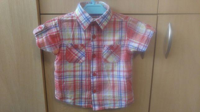 Koszula na krótki rękaw r.80