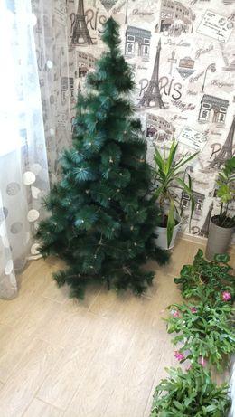 ялинка елка сосна