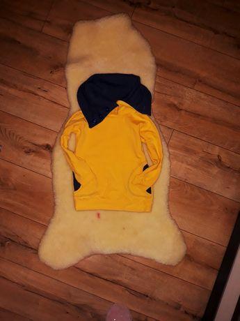 Zara bluza na stojce stan idealny r 116