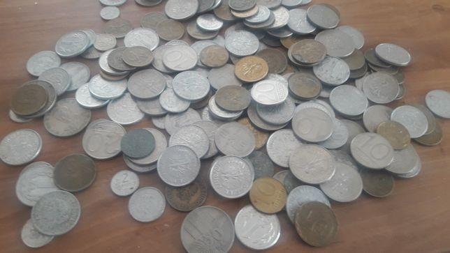 sprzedam monety z prl